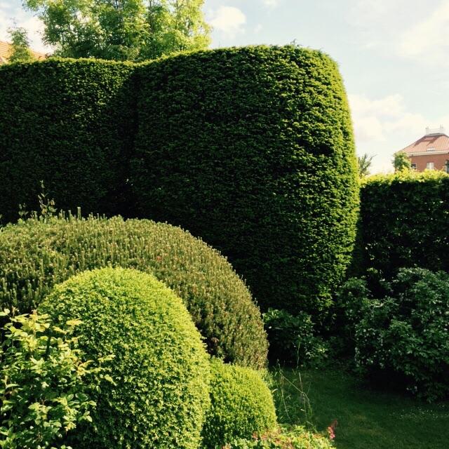 Het scheren van hagen door Hofheren