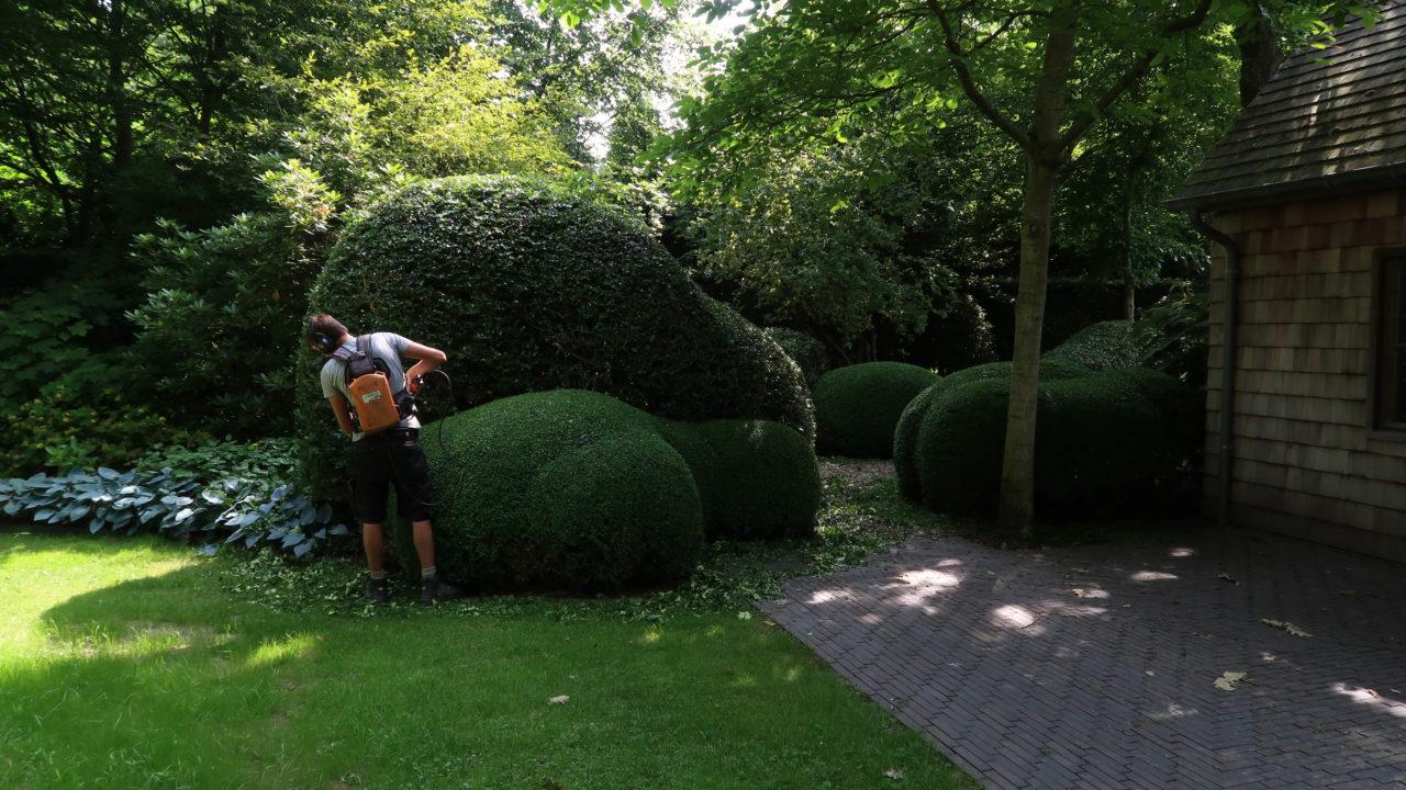 Tuinmedewerker onderhoud bij hofheren
