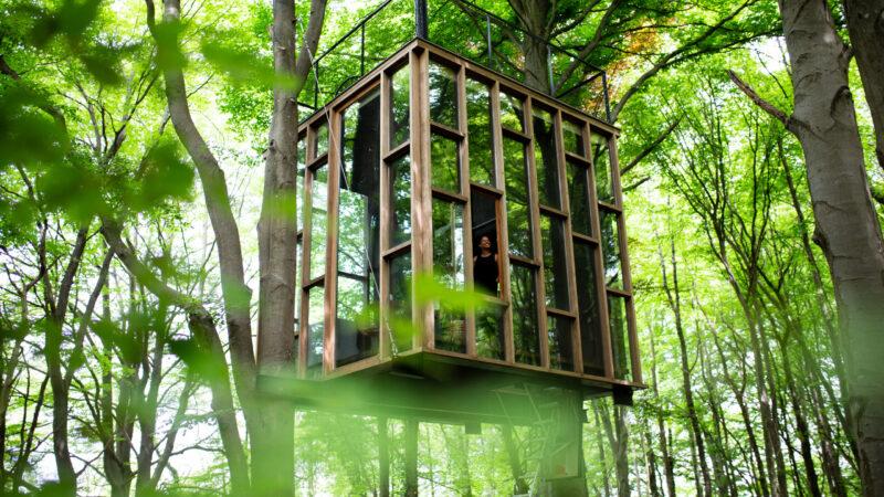 bijgebouw in de lucht in een bos